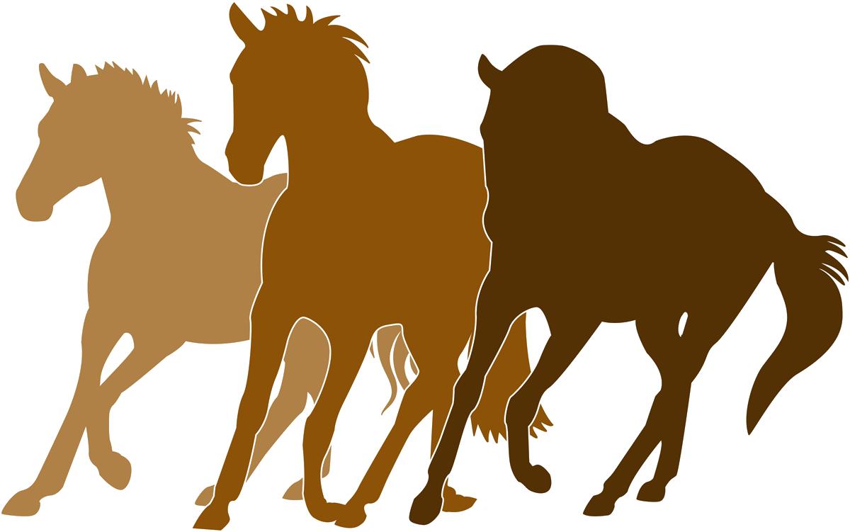 Right Ride Horses Logo
